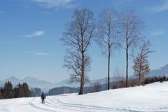 Esquiador del campo a través en pistas blancas como la nieve en montañas austríacas Imagen de archivo
