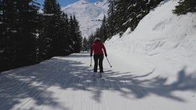 Esquiador desportivo da mulher da opinião traseira do movimento que esquia para baixo em Ski Slope Among Pine Forest video estoque