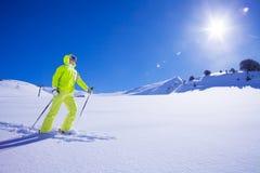 Esquiador do estilo livre Imagens de Stock