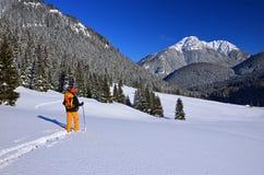 Esquiador do país transversal em montanhas de Tatry Foto de Stock Royalty Free