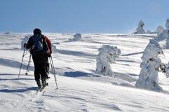 Esquiador do país traseiro (visita do esqui) Fotografia de Stock