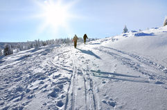 Esquiador do país traseiro (visita do esqui) Imagem de Stock Royalty Free