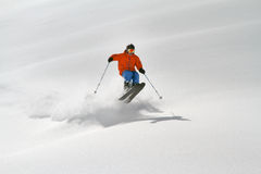 Esquiador en el polvo profundo, freeride extremo Imagen de archivo libre de regalías
