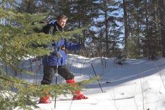 Esquiador en taiga Imágenes de archivo libres de regalías