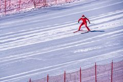 Esquiador que tenta retardar na parte inferior da inclinação íngreme no desafio da velocidade e da velocidade Ski World Cup Race  Foto de Stock Royalty Free