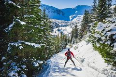 Esquiador que vai a Hala Gasienicowa, mountans de Tatra, Polônia fotografia de stock