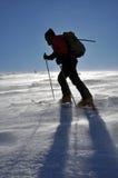 Esquiador que viaja alpestre solo fotografía de archivo libre de regalías