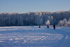 Esquiadores Imagens de Stock