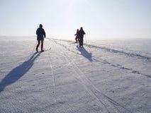 Esquiadores através dos campos Foto de Stock