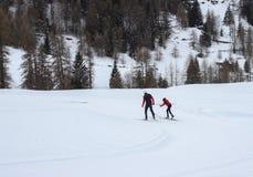 Esquiadores através dos campos Imagens de Stock