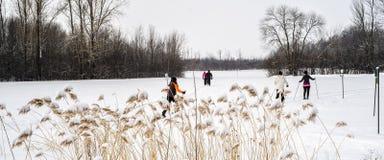 Esquiadores através dos campos da cena do inverno Fotografia de Stock Royalty Free