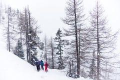 Esquiadores de Freeride Imágenes de archivo libres de regalías