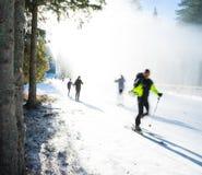 Esquiadores del campo a través Fotos de archivo libres de regalías