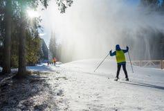 Esquiadores del campo a través Imagenes de archivo