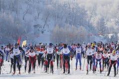 Esquiadores del campo a través que corren en bosque Fotografía de archivo