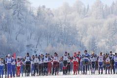 Esquiadores del campo a través que corren en bosque Fotos de archivo libres de regalías