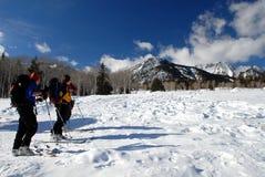 Esquiadores del país cruzado Imagen de archivo libre de regalías