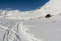 Esquiadores dos traços e o trajeto pisado por caminhantes Foto de Stock Royalty Free