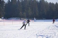 Esquiadores durante un esquí de esquí nórdico del maratón fotos de archivo libres de regalías
