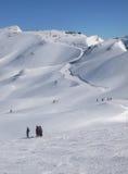 Esquiadores e funcionamento de esqui longo, Imagens de Stock