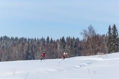 Esquiadores funcionados con en el bosque del invierno debajo del cielo azul imagen de archivo