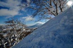 Esquiando en Hokkaido, Japón Fotografía de archivo libre de regalías
