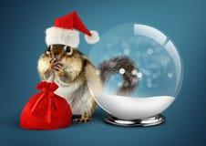 Esquilo animal engraçado vestido como Santa com bola da neve e saco, c Fotografia de Stock