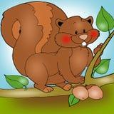 Esquilo Animated ilustração royalty free