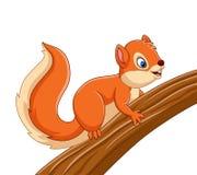 Esquilo bonito dos desenhos animados na árvore ilustração stock