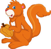 Esquilo bonito que guarda a porca Imagem de Stock Royalty Free