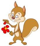 Esquilo com flor Fotos de Stock Royalty Free