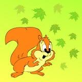Esquilo com folhas coloridas Fotos de Stock Royalty Free