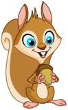 Esquilo com porca Fotografia de Stock