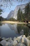 Esquilo de Yosemite Fotografia de Stock Royalty Free