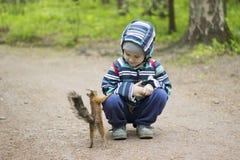 Esquilo do jogo da criança no parque Natureza da reunião das crianças fotografia de stock royalty free