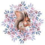 Esquilo e flores Fotografia de Stock