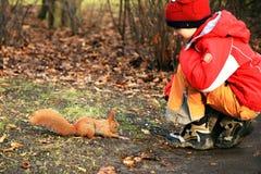 Esquilo e menino Fotografia de Stock