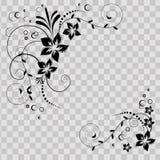 Esquina de la flor en vector Flores negras en fondo transparente Tarjeta florida de la invitación Fondo con floral foto de archivo libre de regalías