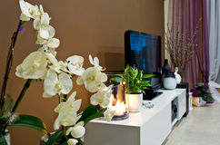 Esquina de la sala de estar adornada Imágenes de archivo libres de regalías