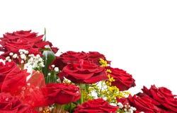 Esquina de rosas rojas Imágenes de archivo libres de regalías