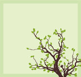 Esquina del árbol Imagenes de archivo
