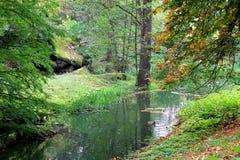 Esquina del bosque del otoño con un pequeño río Imagenes de archivo