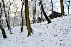 Esquina del Central Park con la cerradura de madera de una caza en la colina Fotos de archivo libres de regalías