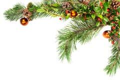 Esquina del marco del follaje de la Navidad Fotografía de archivo libre de regalías