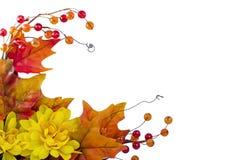 Esquina del otoño Imágenes de archivo libres de regalías