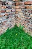 Esquina e hierba antiguas de la pared de ladrillo Imagen de archivo