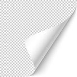 Esquina encrespada ilustración del vector