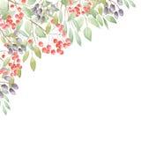 Esquina floral Foto de archivo libre de regalías