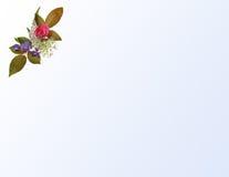 Esquina floral en pendiente azul Foto de archivo libre de regalías