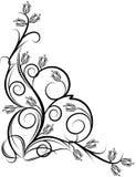 Esquina floral hermosa libre illustration